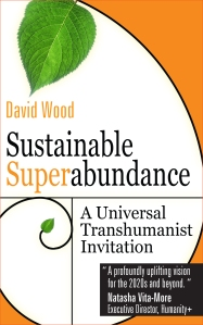 David wood Book Cover 6